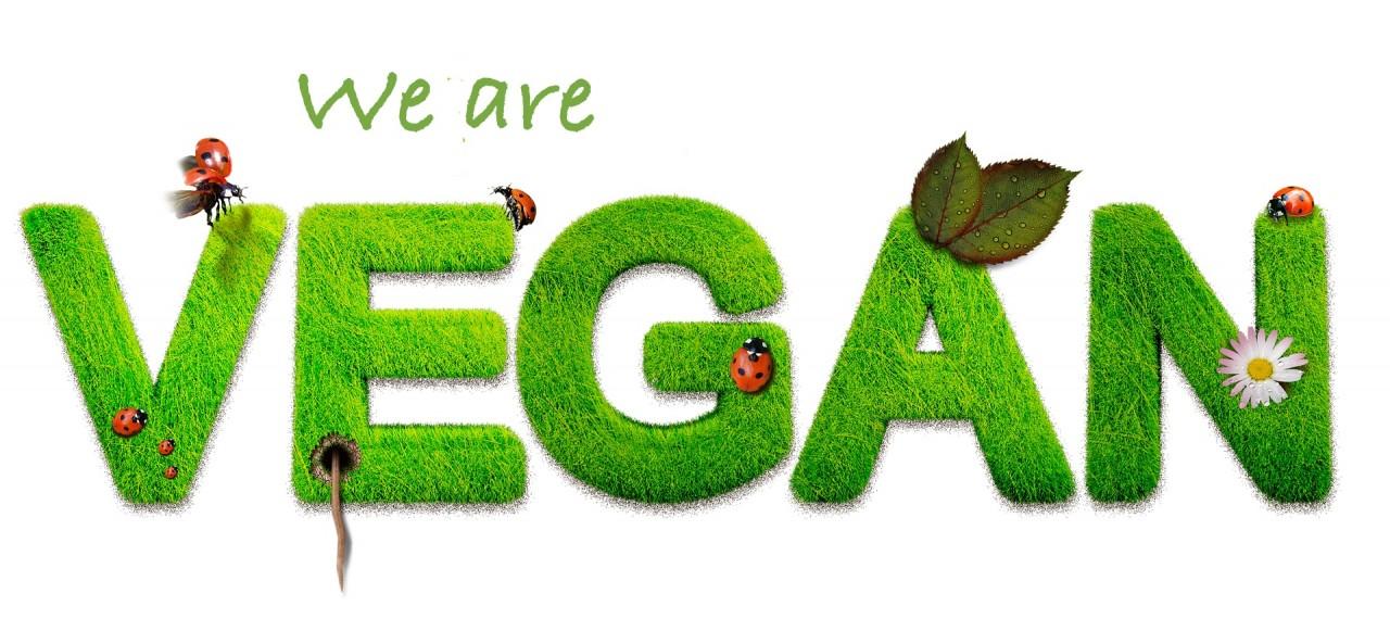 vegan-1091086_1920
